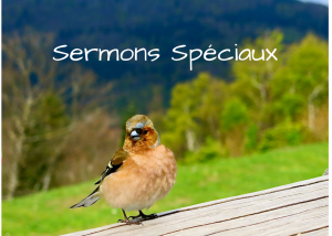 Sermons spéciaux